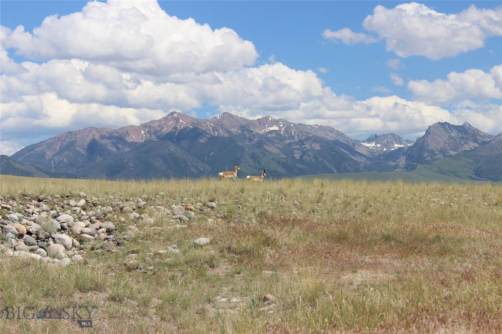Lot 13 Sphinx Mountain Subdivision Property Photo - Cameron, MT real estate listing