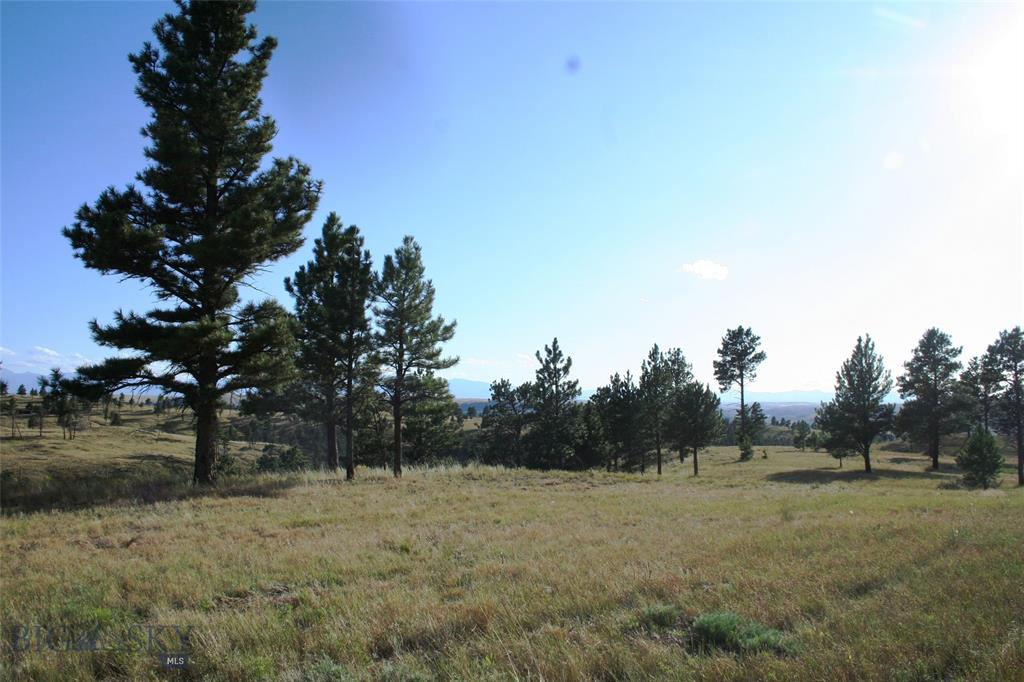 Lot 22 Twopaw Lane, Columbus, MT 59019 - Columbus, MT real estate listing
