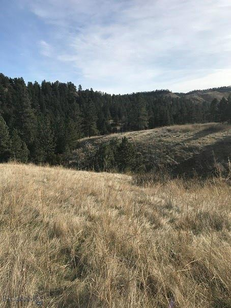 Lot 16A Overland Trail, Reed Point, MT 59069 - Reed Point, MT real estate listing