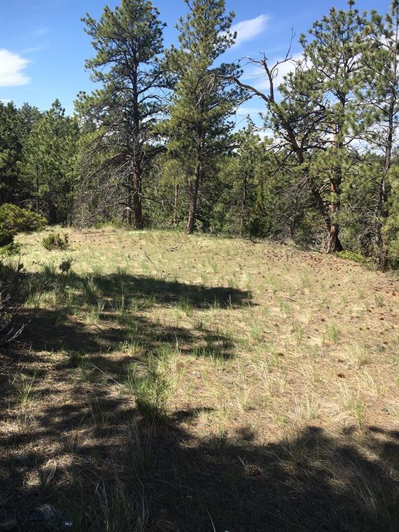 00 Jacobs Hill Road, Columbus, MT 59019 - Columbus, MT real estate listing