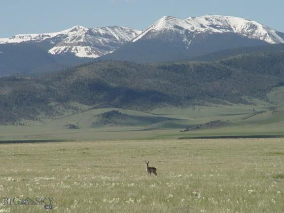 Lot 108 Holding Pen Property Photo - Cameron, MT real estate listing