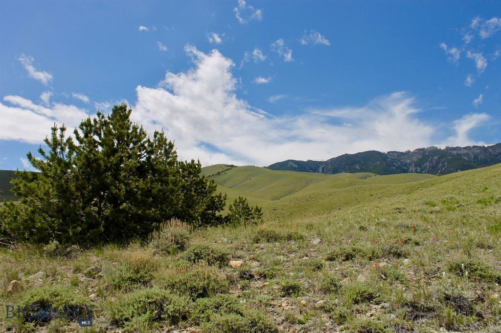 NHN Freedom Trail Property Photo - Belfry, MT real estate listing