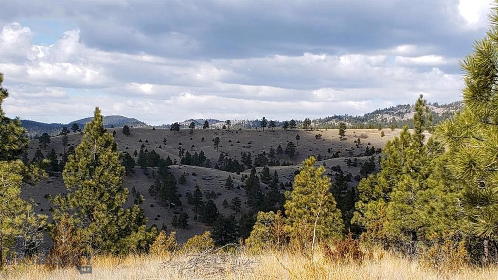 4020 Water Dance Drive Property Photo - Helena, MT real estate listing