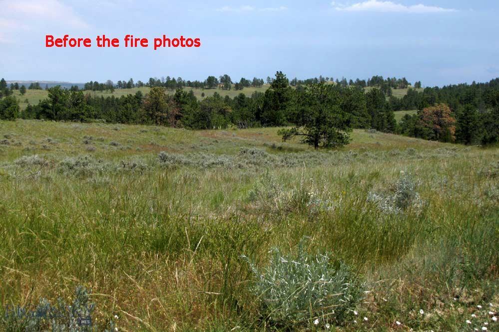 Garfield County Real Estate Listings Main Image