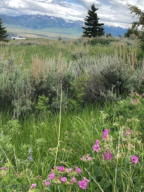 Lot 218A Shining Mountains Unit II Property Photo - Ennis, MT real estate listing