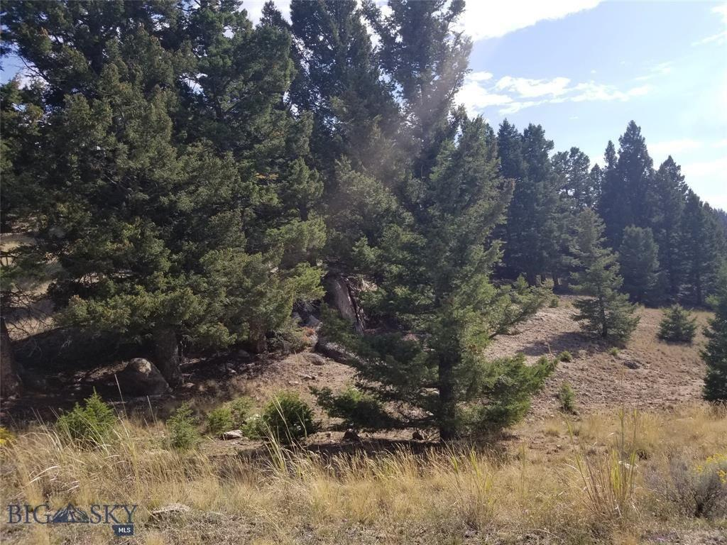Tract F Beef Trail Estates Property Photo - Butte, MT real estate listing