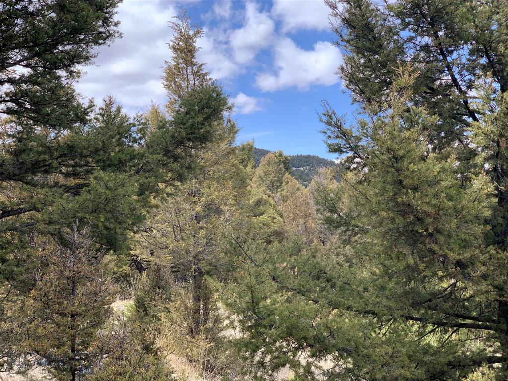 Lot 44 Lookout trail Property Photo - Butte, MT real estate listing