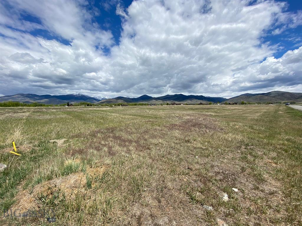 Lot 17 Colettes Way Property Photo - Sheridan, MT real estate listing