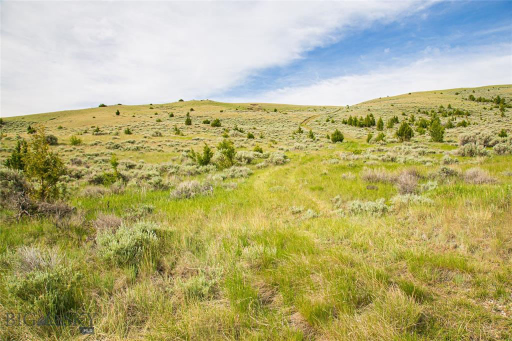 Lot 180 Shining Mountains I Property Photo - Ennis, MT real estate listing