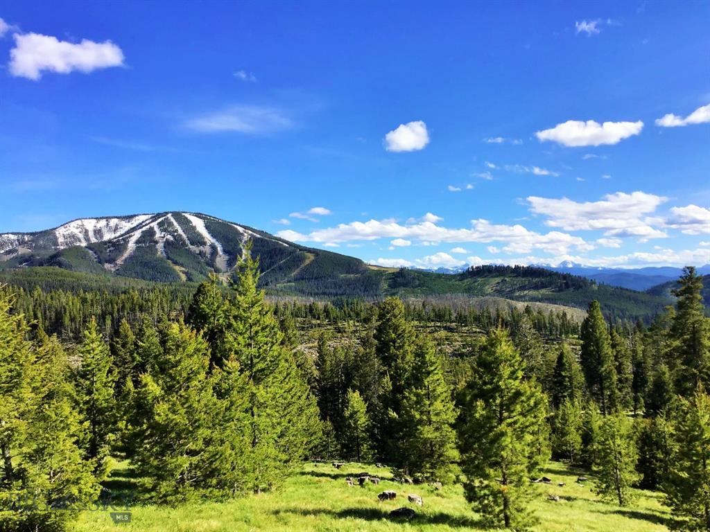 NHN Clearcut Rd-Jumbo Lode Property Photo - Philipsburg, MT real estate listing