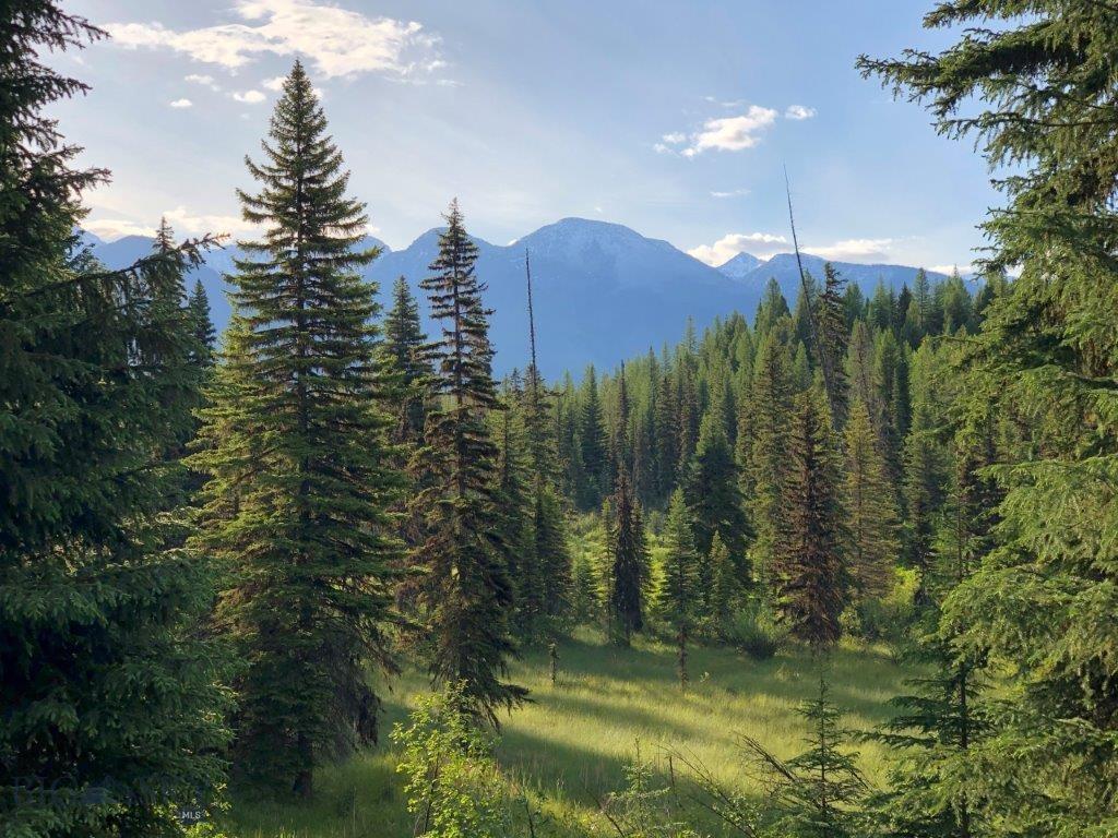 TBD Elk Meadow Road Property Photo - Bigfork, MT real estate listing