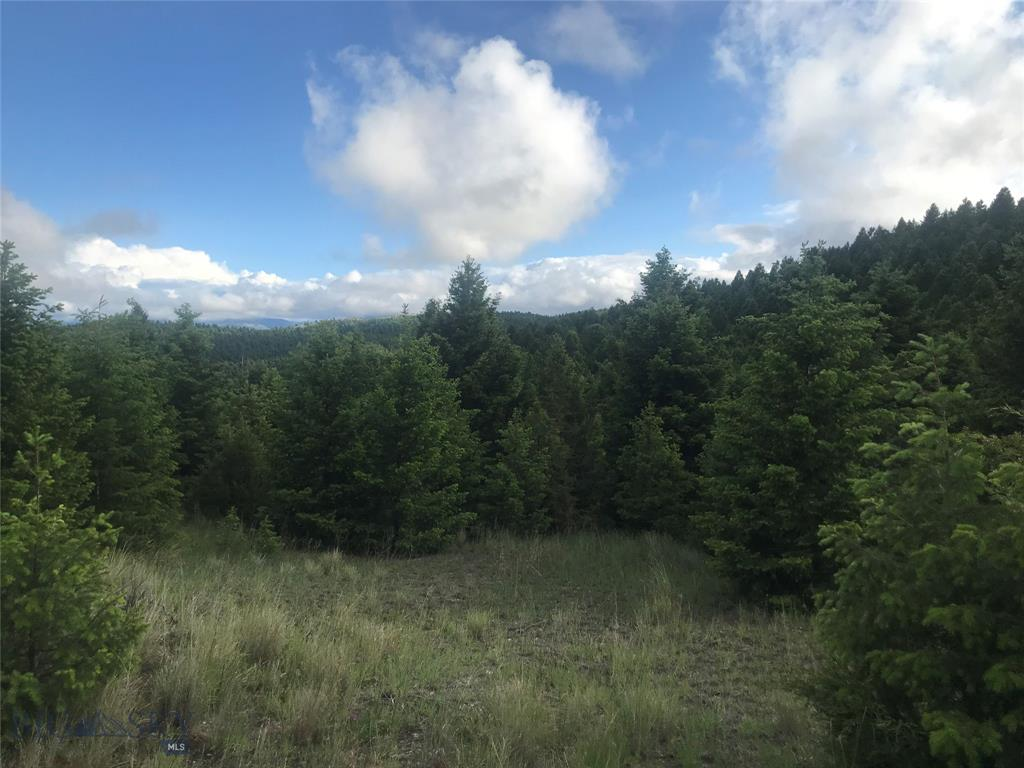 TBD Elk Haven Drive Property Photo - Anaconda, MT real estate listing