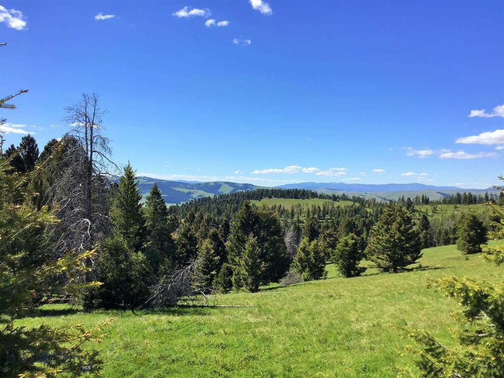 TBD Georgetown Lake Road Property Photo - Philipsburg, MT real estate listing