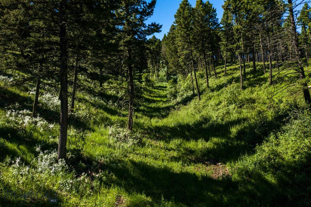 TBD Elk Ridge Road Property Photo - Livingston, MT real estate listing