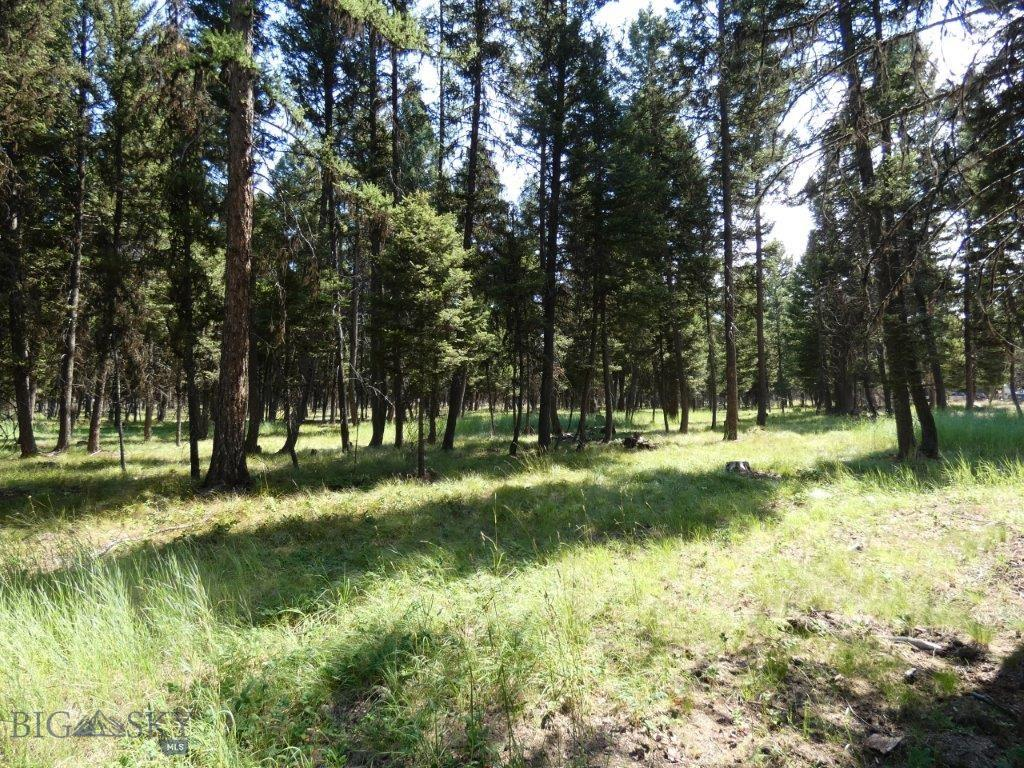 3214 Hwy 83 Property Photo - Seeley Lake, MT real estate listing
