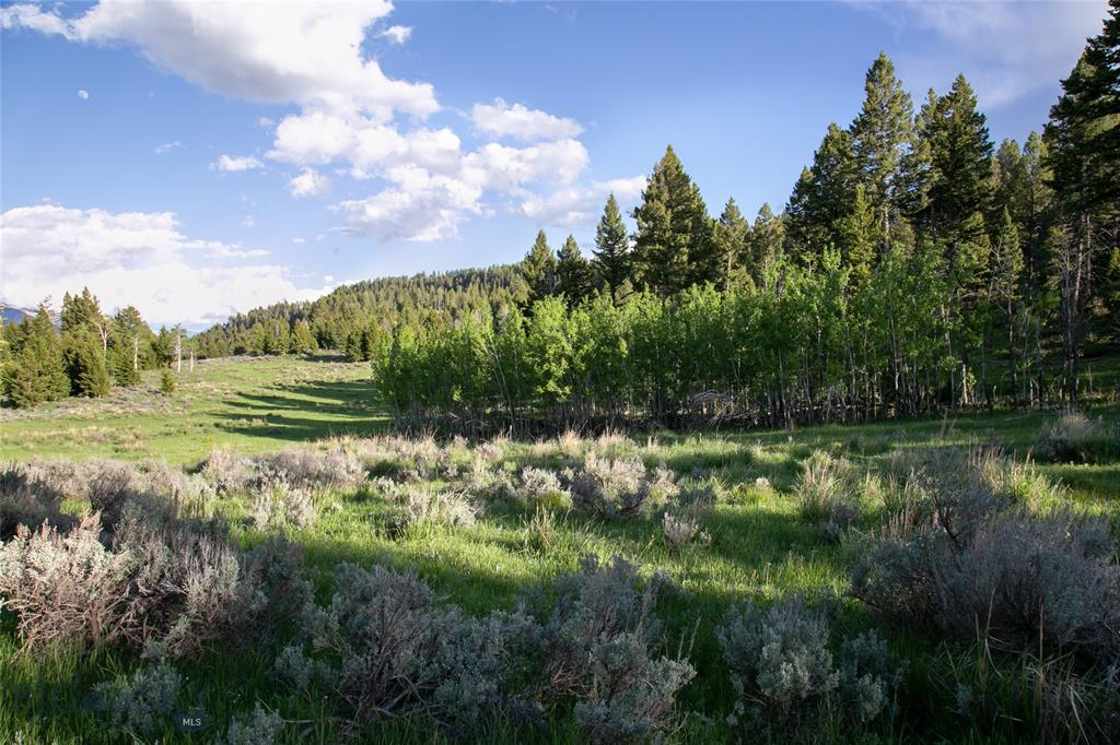 Lot 29 Sun West Ranch Property Photo - Cameron, MT real estate listing