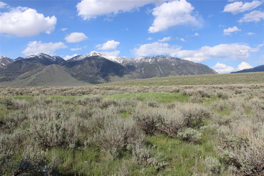 Lot 52 Madison River Ranches Property Photo