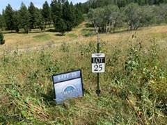 Lot 25 Claim Creek Road Property Photo