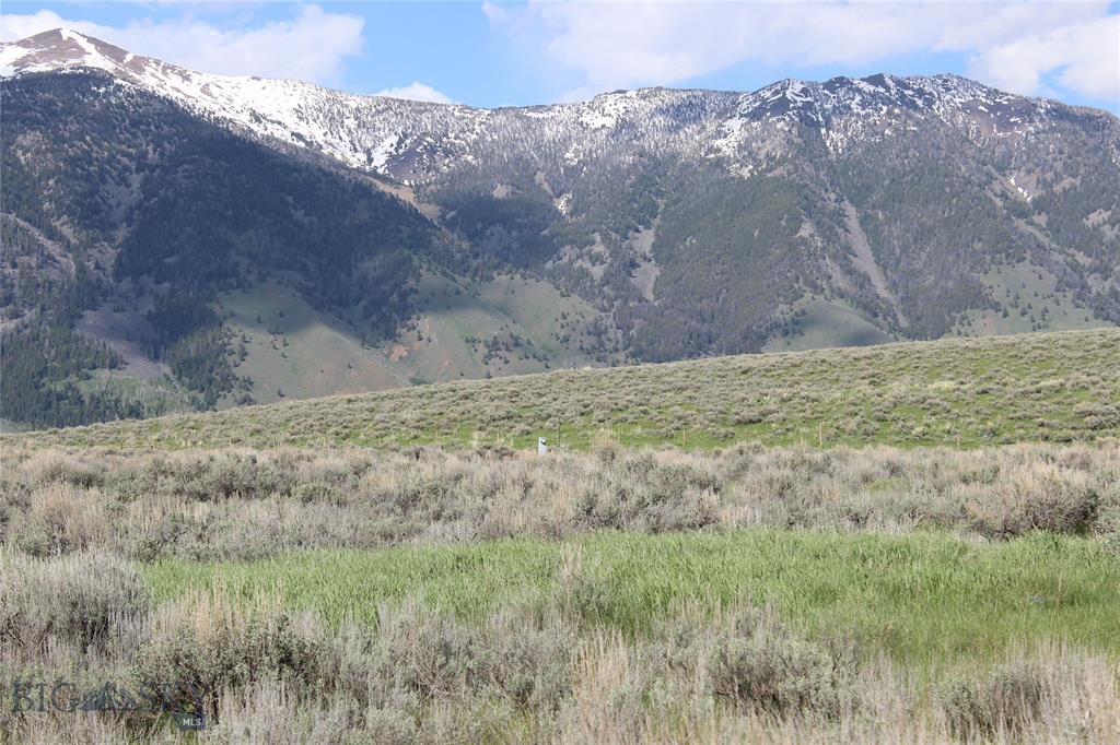 Lot 51 Madison River Ranches Property Photo