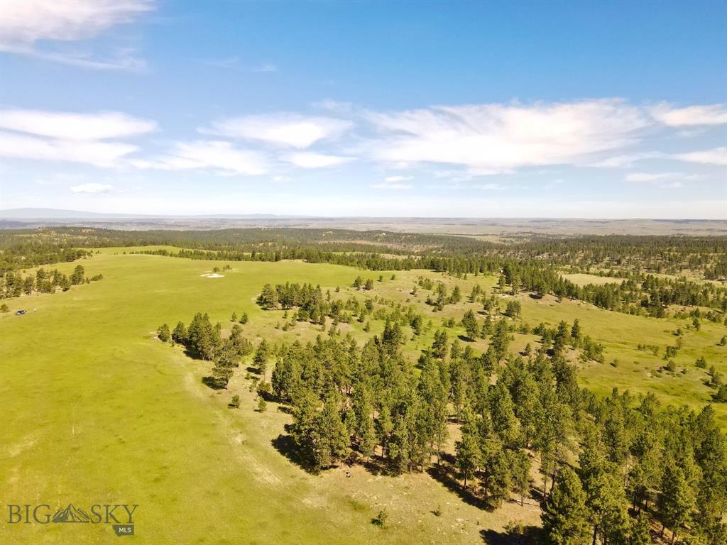 Parcel 1 Bender Road Property Photo - Roundup, MT real estate listing