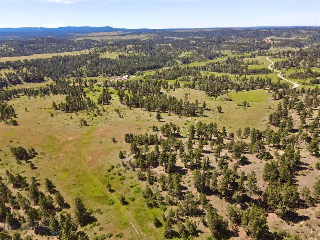 Parcel 2 Bender Road Property Photo - Roundup, MT real estate listing