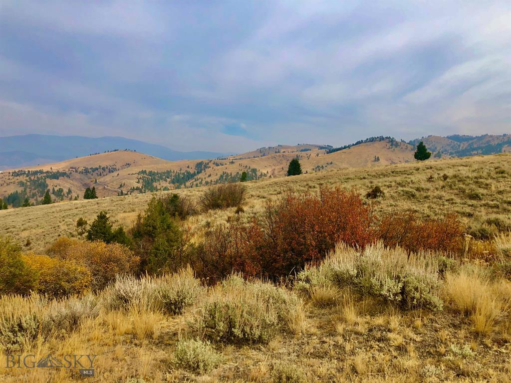 TBD Ross Gulch Road Property Photo - Broadwater, MT real estate listing