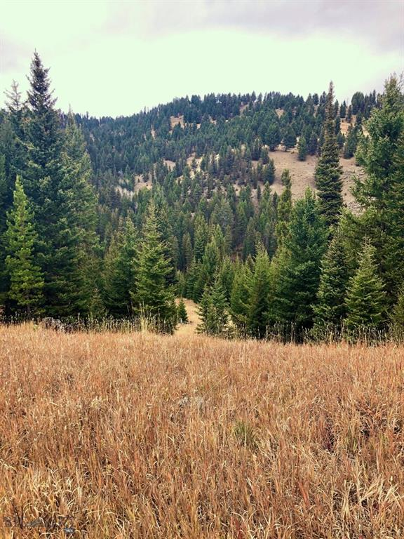 TBD Beaver Creek Road Property Photo