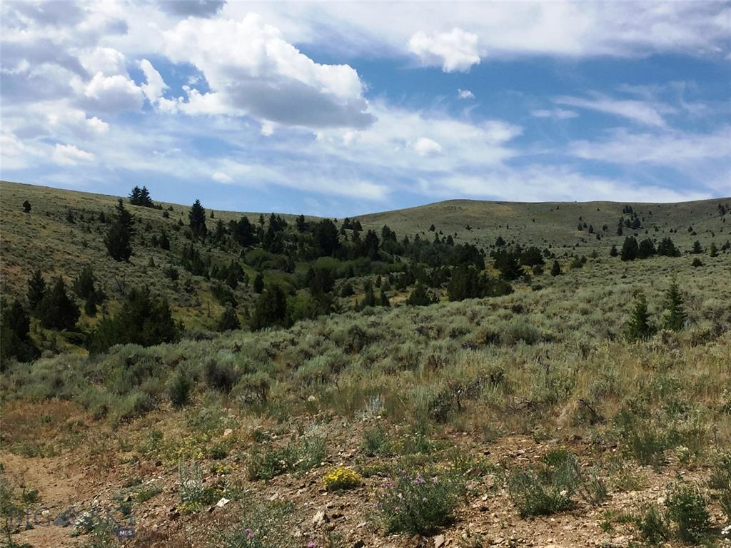 Lot 7 Virginia City Ranches Property Photo