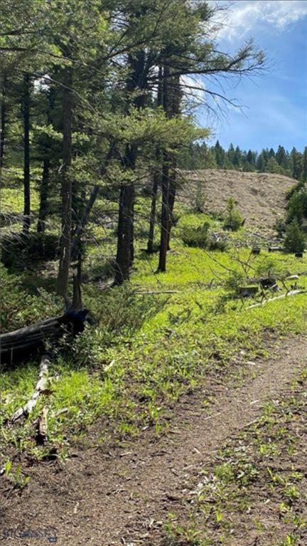 MS941 Snow Shoe Creek Road Property Photo - Avon, MT real estate listing