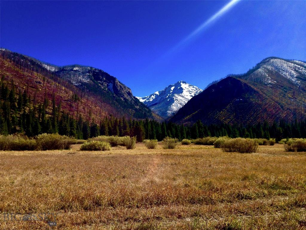 Tract 2 Dutch Road Property Photo - Pray, MT real estate listing