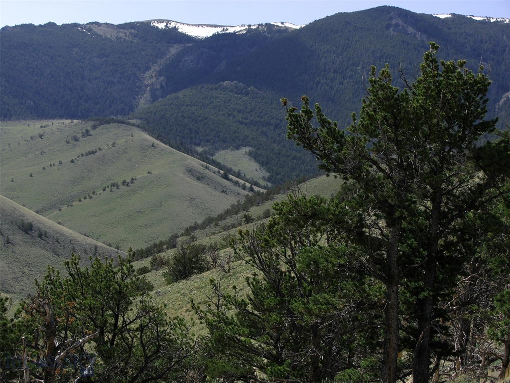 tbd Freedom Trail Property Photo - Belfry, MT real estate listing
