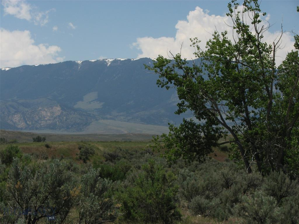 NHN Pineapple Place Property Photo - Belfry, MT real estate listing