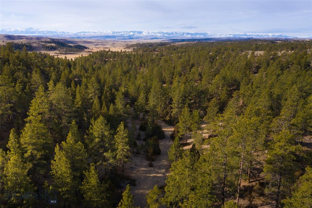 TBD Lower Sweet Grass Road Property Photo - Big Timber, MT real estate listing