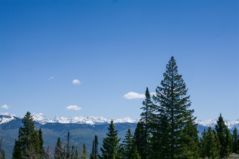 1251 Gore Trail, Edwards, CO 81632 Property Photo - Edwards, CO real estate listing