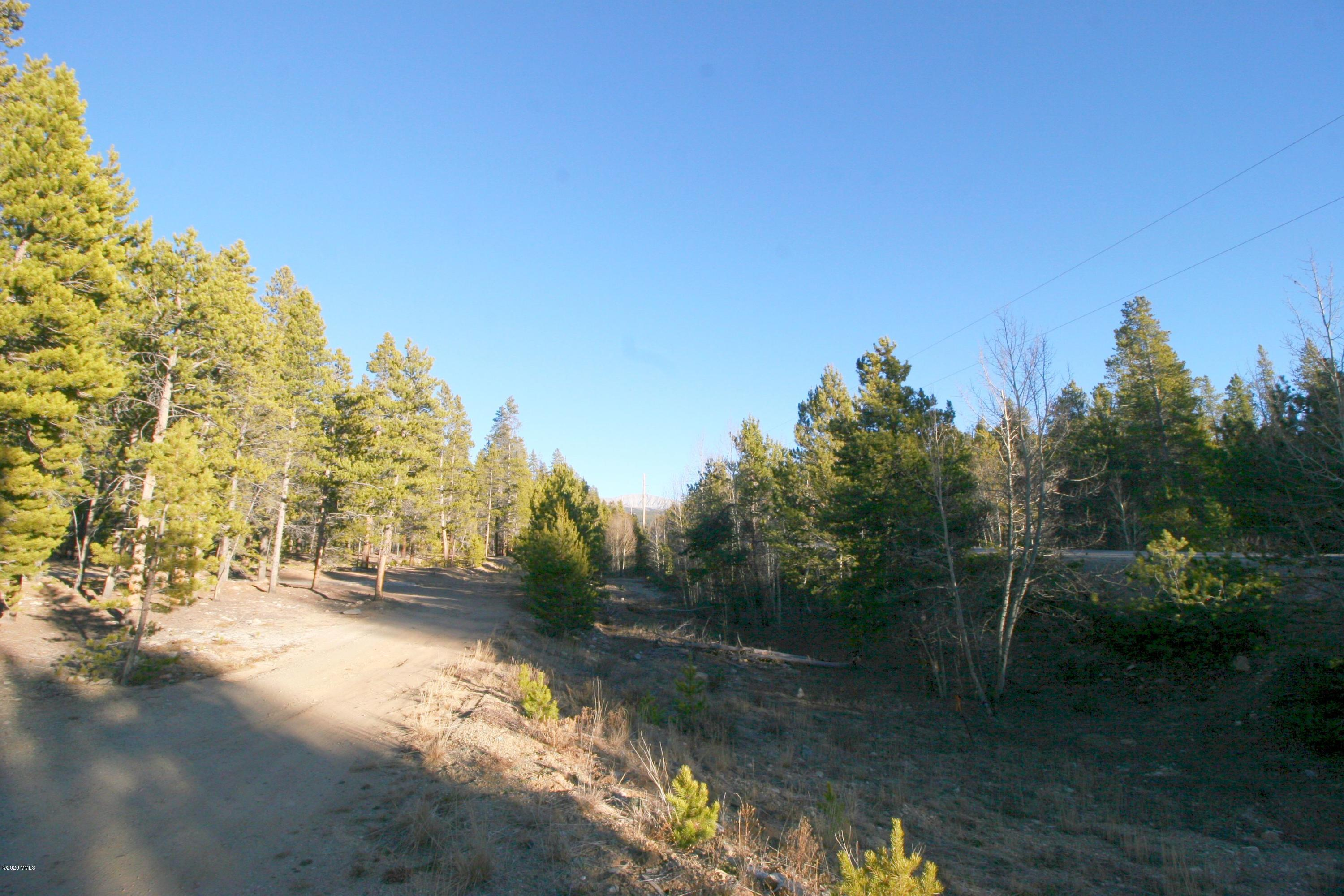 1099 County Road 4, Leadville, CO 80461 Property Photo - Leadville, CO real estate listing