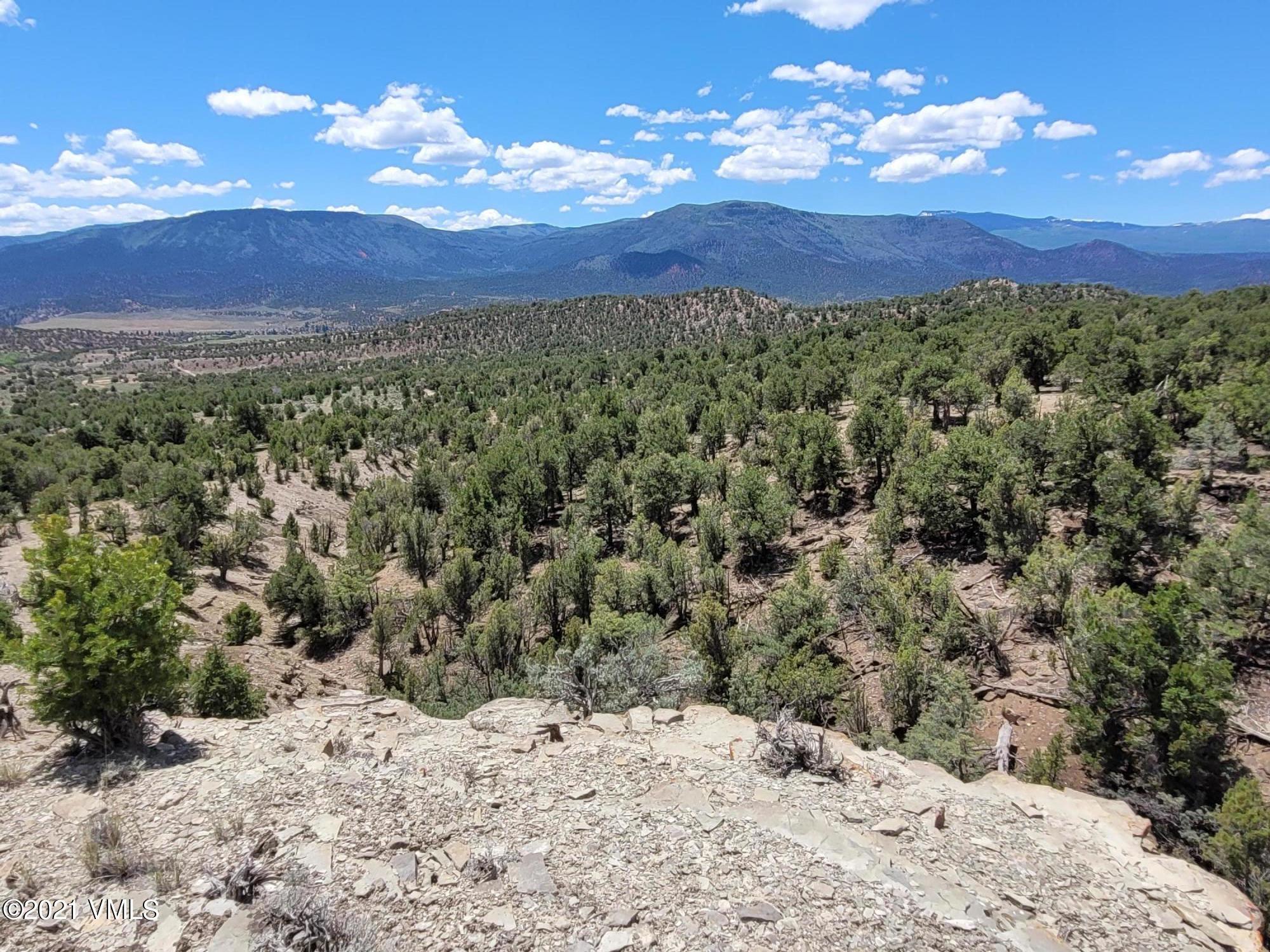 250 Juniper Park Trail Property Photo