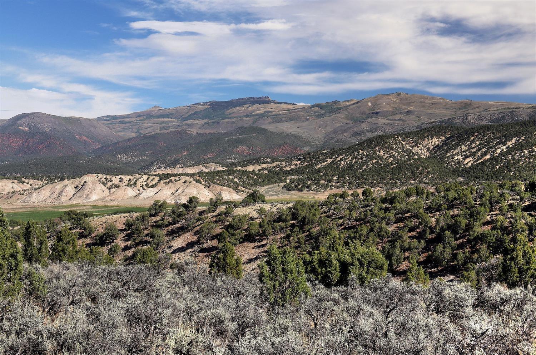 2578 E Haystacker Drive, Eagle, CO 81631 Property Photo - Eagle, CO real estate listing