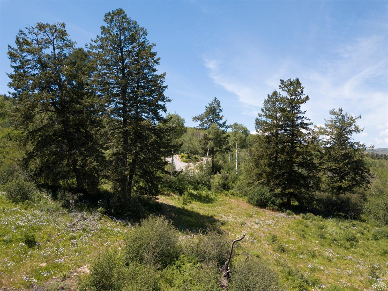 384 Jouflas Ranch Road, Wolcott, CO 81655 Property Photo - Wolcott, CO real estate listing