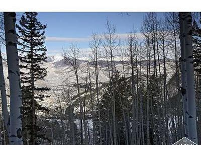 1023 Forest Trail, Edwards, CO 81632 Property Photo - Edwards, CO real estate listing