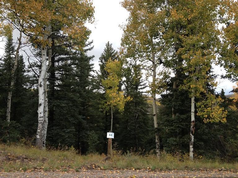210 Settlers Loop, Edwards, CO 81632 Property Photo - Edwards, CO real estate listing